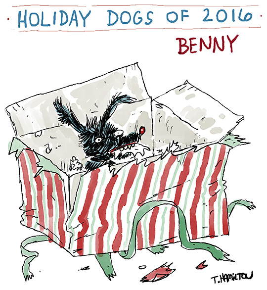 holiday-dog-4-2016